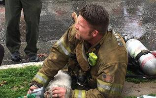 firefighter-cpr-dog