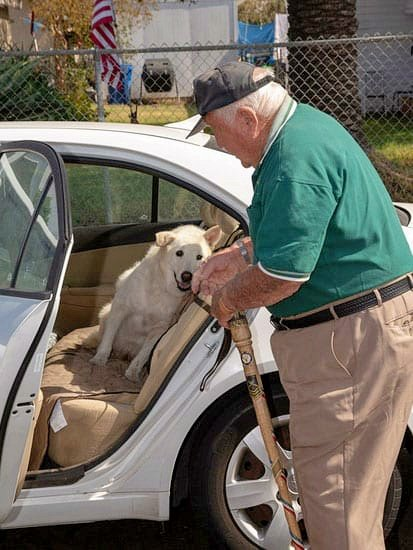 13-Year-Old Dog Spent His Entire Life At Shelter, Until Elderly Veteran Took Him In