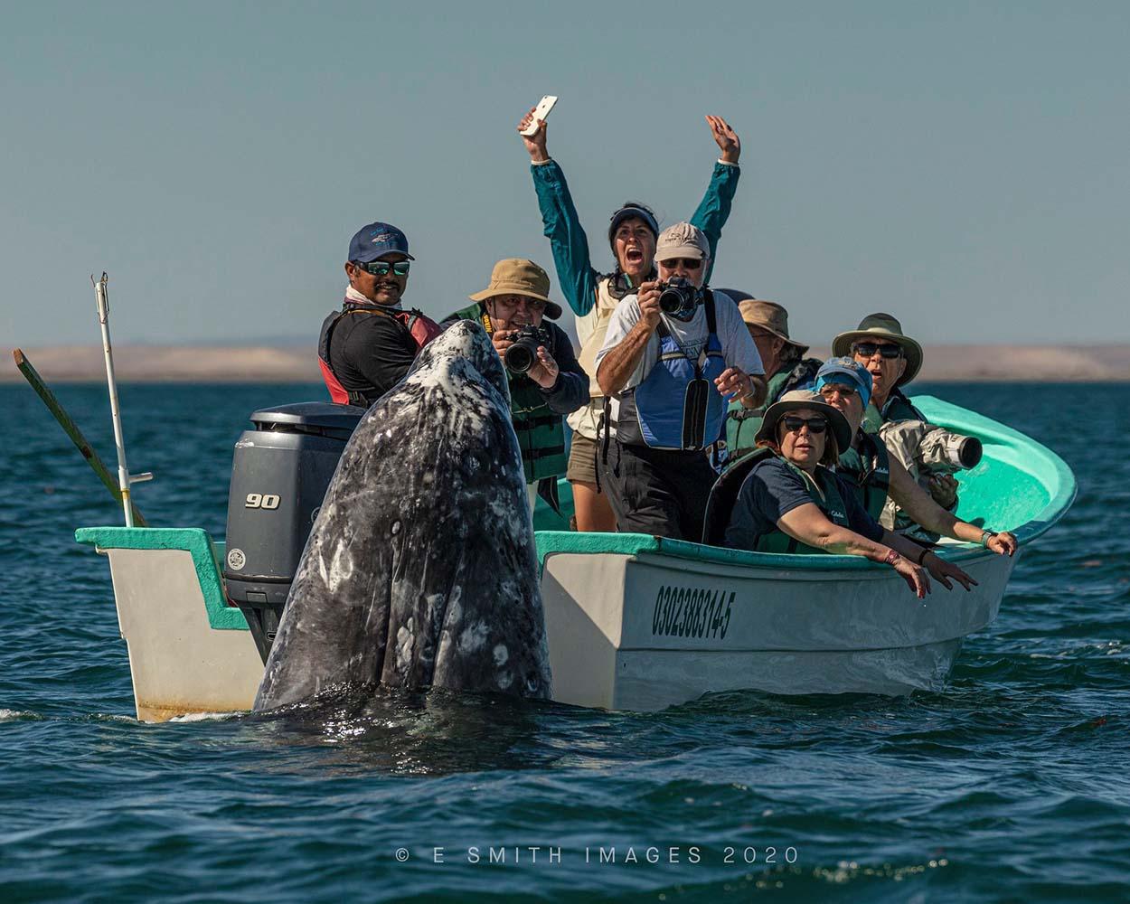 Mujer muy feliz al ver una ballena